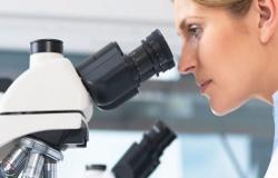 Диагностика, удаление и лечение остроконечных кондилом и генитальных папиллом у женщины